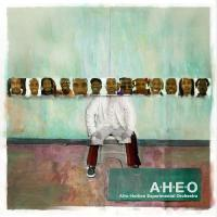 Afro-Haitian Experimental Orchestra - (CD)