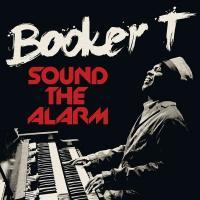 Sound The Alarm - (LP)