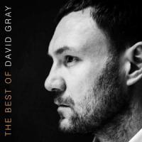 The Best Of David Gray - (CD)