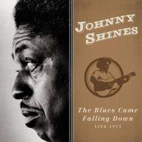 The Blues Came Falling Down: LiIve 1973 - (CD)